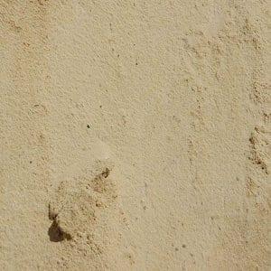 sand_WR